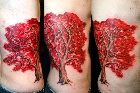 Ryan El Dugi Lewis - Red Japanese Maple Tree